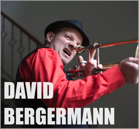 David Bergermann